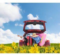 Comunicato stampa: Agosto in crescita per il mercato auto +9,5%